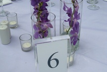 Purple wedding VS beach wedding / by Maranda Koch
