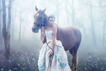 romantic photos with horses, sunset, ....