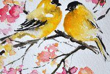 Aves...