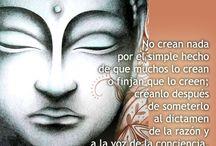 budismo y Zen
