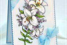 Joyful Lilies