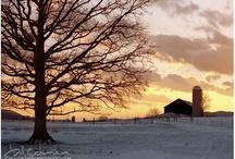 Winter / by Jen Whiskeyman