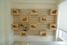 Pomysły na meble dla kota