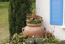 Mediterranian gardening
