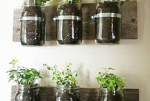 Recycled Growing Containers / Food growing at school does not have to be expensive. Use recycled materials!