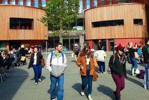 İngiltere'de Üniversite Eğitimi / İngiltere Üniversiteleri Hakkında