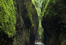 #upperleftusa / pins about the pacific northwest
