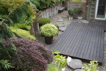 Garden & Yard... and Indoor plants / by Joey Finley