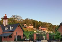 Missouri Wine Country - Everything You Need to Know / Missouri Wine Country is one of the top rated winery areas of the world. #theinnathermannhof #bedandbreakfast, #winery