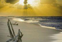 OCEAN - MY HAVEN