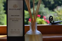 WILD PLANET | Reed Diffusers / Luxury Reed Diffusers | Hand poured Aromatherapy Scented Reed Diffusers | Essential Oil Reed Diffusers with therapeutic benefits to enhance your wellbeing, 100% natural fragrances | Made in England