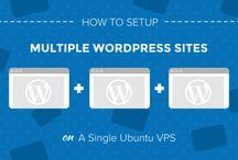 WordPress / All things WordpPress