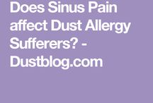Dust Allergy Blog