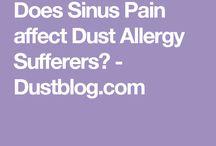Dust Allergy Blog