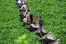 Vietnam travel / by monky luff