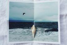 sea & summer