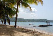 Jamaica dream