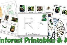 Earth Day/Rainforest
