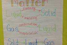 Science-4th Grade / by Whitney Harper