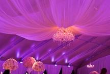 MJCS Purple Tent Event