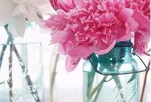 Flowers the wonder of / by Kathy Shay-Shapiro