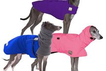 Italian Greyhound Dog Apparel / Discover stylish dog coats to keep your Italian Greyhound warm and dry in any season. Choose Voyagers K9 Apparel for dog coats that simply fit! Comfortable winter dog coats, rain jackets, and our soft Tummy Warmer dog sweater vest are just some of the apparel available for your Italian Greyhound. USA made.