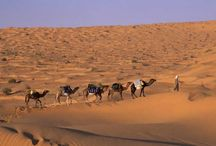 Charming desert / Desert