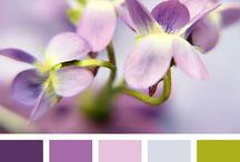 lilac green palette