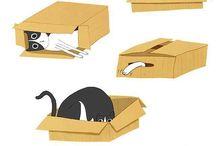 Comical cats