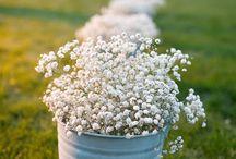 Häät kukat