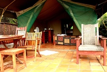 Accommodation: River Tents