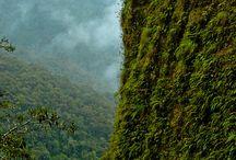 Bolivia / by Melissa Voti