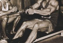 Routines and Programs for Muscle Gains