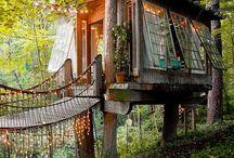 Casas na Árvore