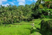 ** Bali **