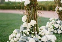 Wedding Arches/Chuppahs / by Rachel Stankevich