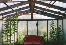 • GREENHOUSE • / Greenhouse inspiration.