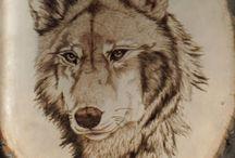 Osamelý vlk