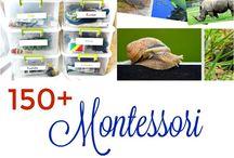 Best Montessori Activities and Ideas / Montessori sensorial activities, paper dolls, art, crafts, ideas, easy, preschoolers, children, kids, activities, fun, manipulative, multicultural