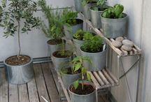 Small Deck Gardens