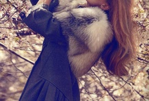 """""""At least I wouldn't skin a collie to make my backpack..."""" // Faux Fur / Faux fur inspirations. / by Sophie Mollison"""
