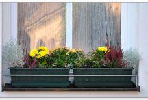 Zábrany truhlíků Dastech / Jak ideálně vyřešit zábrany nebo držáky do oken, tak aby truhlíky s květinami nepadaly? S praktickým a inovativním řešením přichází na trh firma Dastech, český výrobce a prodejce užitečných doplňků pro Váš rodinný dům. Jedním ze zajímavých produktů značky Dastech jsou i velice užitečné nerezové zábrany truhlíků, díky nimž lze dopřát bezpečný  pobyt květinám na okenním parapetu.