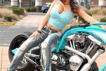 Harley / Chopper / Custom Bike Models