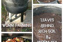 worm farms