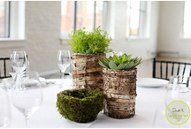 Loft Tablescapes / Our designers have put together an amazing array of gorgeous table decor.  All you have to do is ask and that is one more thing you can check off your list.  Tablescape...done!~