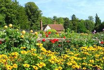Walled Gardens / Britain has many wonderful walled gardens - see some of them here