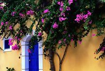 Yunanıstan mavı