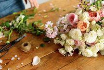 Spring flowers / by Liz Cherkasova