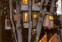 I Want a Treehouse / by Amy Campbell Pleasant Tyndall