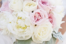 Wedding Inspiration / by Laura Hooper